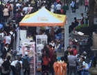光谷步行街多莫萌宠街招商 武汉宠物市场在哪