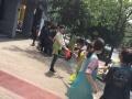 浙江省专业的宠物学校--杭州爱可宠物美容学校