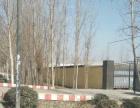 世纪路辛曹段钢结构厂房3000平出租