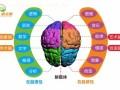 西安卓尔脑全脑潜能教育全脑开发