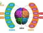 兰州 卓尔脑全脑开发潜能教育MRZ