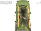 转让户外装备探路者60L背囊双肩背包户外登山包徒步背包TEBB8