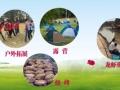 无锡市徐霞客镇硒普科技产业园,户外拓展、自助烧烤