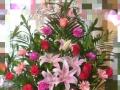 情雨花店七夕节批发零售各种鲜花花束 公仔 礼盒等