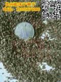 包出芽蛇床子种子经销商