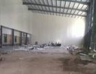 同安禹州大学城附近钢构厂房1000平出租(有手续)