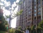 蓝湾花园精装公寓首租 超值之选 大飘窗朝南 多套可选