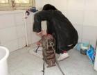 铜仁疏通下水道,水电维修,改管换管,开孔