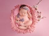 闵行七宝儿童摄影团购宝宝照儿童艺术照 新生儿上门拍摄