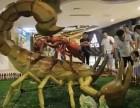 上海文豫传媒大型昆虫展恐龙展资源租赁
