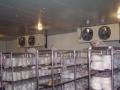 冷库设备安装、低温冷库、双温冷库、保鲜冷库、优惠中
