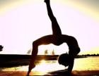 简瑜伽,爵士舞,拉丁舞,街舞培训机构