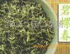 竹园山茶叶招商加盟
