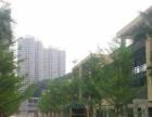 钟福广场商业街卖场临街商铺免租两个月火热招租