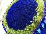 合肥市合作化路黄山路中国科技大学鲜花店爱情祝福鲜花