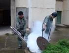 东莞白蚁防治协会单位 甲级资质单位 确保灭治效果不留患