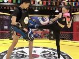 北京散打跆拳道武术哪里可以打比赛