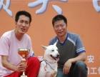 沈阳训犬训狗基地金牌宠物训练学校10保证连锁经营