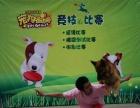 沈阳宠物美容师训犬师宠物营养师培训学校超高性价比