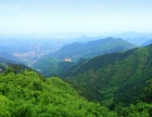 (2200亩)出售长清灵岩寺附近环境优美土地