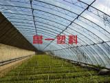 CALL ME!【蔬菜大棚专用膜】育苗温室专用膜-熏地膜