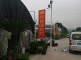 苏州办公室绿植租赁花卉租赁