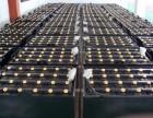 二手叉车电瓶回收 二手铅酸电瓶回收 石家庄蓄电池回收厂家价格