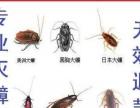 家庭灭蟑螂灭鼠、一次性灭绝无效全额退款。