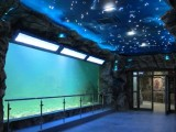 定做大型鱼缸 大型海鲜鱼缸 大型酒店鱼缸