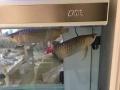彩蝶 龙缸B款 1米5 全超屏风缸.鱼缸