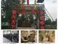 惠州团队出游**地方