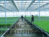 河北厂家专业生产苗床网移动苗床