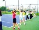 寒假东莞网球培训班开始报名招生于1月12号开班