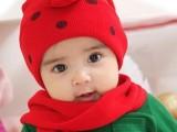 韩国秋冬新款七星瓢虫甲壳虫卡通儿童帽子+围巾两件套 一件代发
