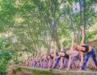 长沙开福区湘江世纪城附近学舞蹈瑜伽教练培训班零基础