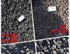 大连焦炭|大连取暖焦炭|大连生活用碳|大连煤炭