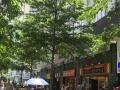华强北餐饮街铺转让300平方合同可5年