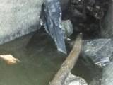 长海抽地沟油