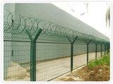 河北品质好的监狱刺网护栏批发监狱刺网护栏