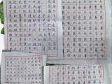 兰州成人硬笔书法练字培训班常年招生 逸飞书法教育