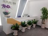 宝安光明 鲜花绿植租赁出售 承接绿化工程 上门设计 包送货