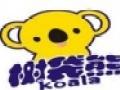树袋熊儿童乐园加盟