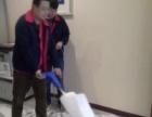 西安较专业地毯清洗沙发清洗