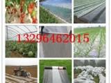 农膜生产厂家价格