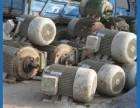 广州二手电机回收价格,广州废旧马达回收,广州二手电焊机回收