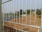 出租沙埠村园岭养殖区养猪场可养500头以上肉猪