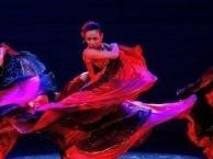 潍坊西班牙斗牛舞、佛朗明哥强势来袭,成品舞培训