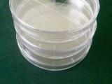 无菌实验培养皿规格90mm