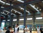 高橋高行打籃球絕佳去處源本籃球館