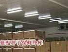 番禺专业冷库安装 冷库设计报价 冷库维修 上门服务